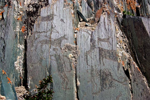 アルタイ山脈の岩絵群(Petroglyphic Complexes of the Mongolian Altai)