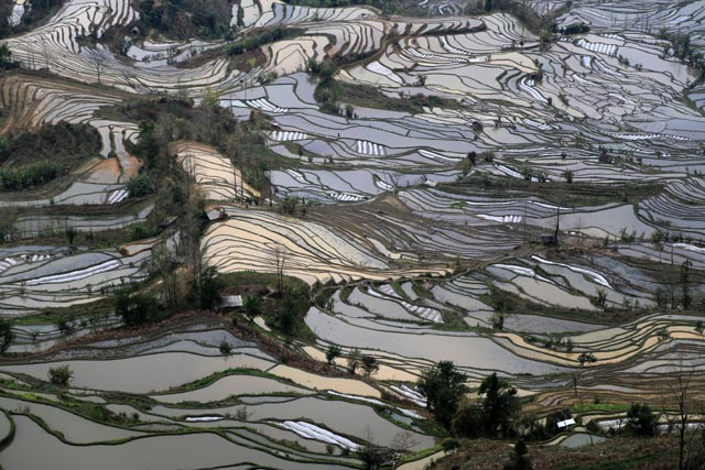 紅河哈尼棚田群の文化的景観(Cultural Landscape of Honghe Hani Rice Terraces)